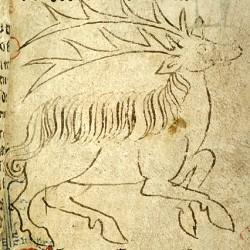 Парандр (Рукопись Моргановской библиотеки в Нью-Йорке Manuscript. M.890, fol. 6r.)