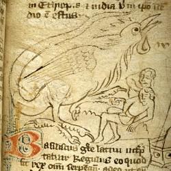 Василиск (Рукопись Моргановской библиотеки в Нью-Йорке Manuscript. M.890, fol. 16r.)