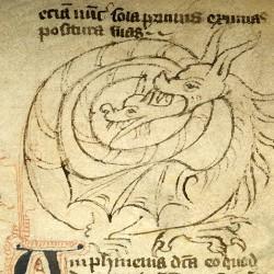 Амфисбена (Рукопись Моргановской библиотеки в Нью-Йорке Manuscript. M.890, fol. 17r.)