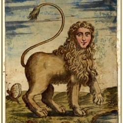 Мантикора на иллюстрации Улисса Альдрованди