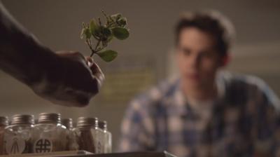 """Омела. Сезон 3, эпизод 04. Сериал """"Волчонок"""" (Teen Wolf)"""