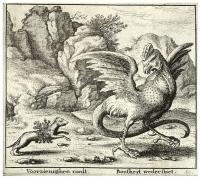 Поединок хорька с василиском. Гравюра Вацлава Холлара, XVII век