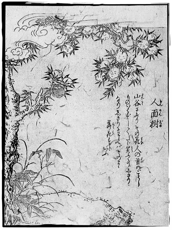 Дерево дзиммэндзю. Иллюстрация Ториямы Сэкиэна