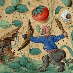 Битва онокентавра с драконом. Иллюстрация из средневековой рукописи