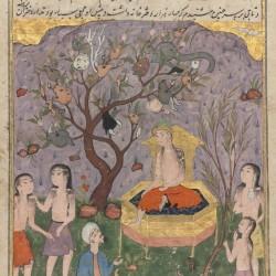 Вероятно, дерево вак-вак на ирано-персидской иллюстрации XVI века к сочинениям Казвини