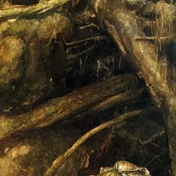 Худое пальтишко. Иллюстрация Алана Ли