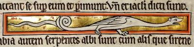Сирена-змея в Абердинском бестиарии (MS24; Folio 69v),  Англия, XII век