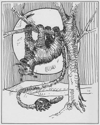 """Щепкот. Иллюстрация Маргарет Рэмси Трайон из книги """"Устрашающие твари"""""""