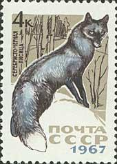 Серебристо-черная лисица. Почтовая марка СССР