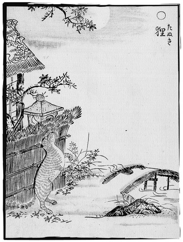 Тануки. Иллюстрация Ториямы Сэкиэна