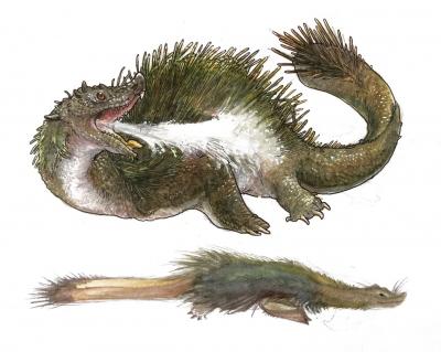 """Пелюда. Иллюстрация из блога """"Iguanodon't"""""""