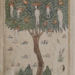 "Дерево Вак-вак с арабского манускрипта XV века ""Китаб ал булхан"""