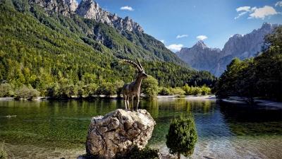 Статуя Златорога на Ясном озере (Jezero Jasna) в Словении