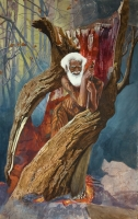 Рождение лешего. Иллюстрация Анны Байбаковой