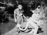 Одинокий Зуп пугает встречного. Кадр из фильма «Лоскутушка из страны Оз» (The Patchwork Girl of Oz, 1914)