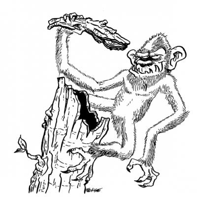 Агропельтер. Иллюстрация Брюса Ван Паттера