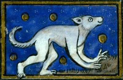 Кефуза. Иллюстрация рукописи городской библиотеки Валансьена (MS 320), fol.56v