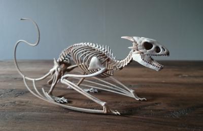 Реконструкция скелета виверны. 3D-принт