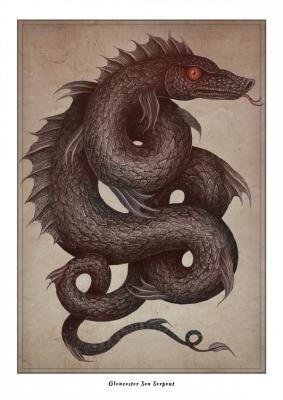 Глочестерская морская змея. Иллюстрация Владимира Станковича