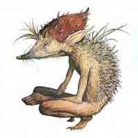 Урхин-пикси. Иллюстрация Брайана Фрауда