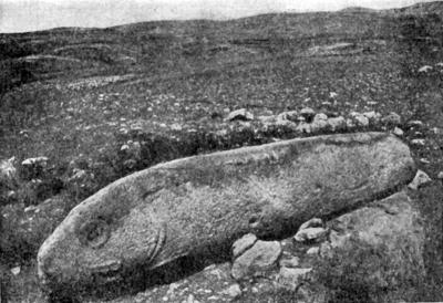 Вишап в форме рыбы. Каменное изваяние из раскопок стоянки Имирзек Гегамского хребта
