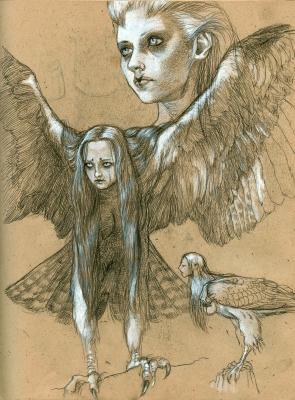 """Гарпия. Рисунок Курта Комода (Kurt """"TickleMeCthulhu"""" Komoda)"""