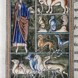 Сотворение животных. Рукопись Бодлеянской библиотеки (MS Ashmole 1511, fol. 006v.)