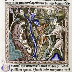 Охотники убивают единорога. Рукопись Бодлеянской библиотеки (MS Ashmole 1511, fol.014v.)