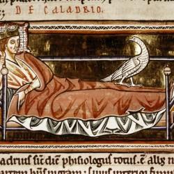 Харадр смотрит на больного. Рукопись Бодлеянской библиотеки (MS Ashmole 1511, fol.069r.)