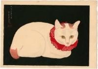 Белая кошка. Автор рисунка Такахаси Хироаки