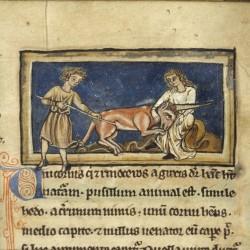Охотники убивают единорога. Рукопись Бодлеянской библиотеки (MS. Bodley 533, fol. 003r.)