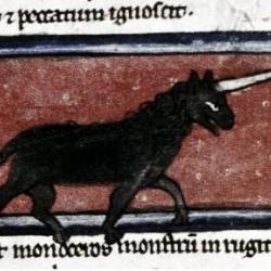 Единорог (monoceros). Рукопись Бодлеянской библиотеки (MS. Bodley 533, fol.006v.)