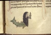 Маргиналия, изображающая русалку-мужчину в монашеской рясе. Рукопись Бодлеянской библиотеки (MS. Bodley 533, fol. 026r.)