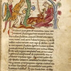 Охотники, убивающие единорога. (Рукопись Бодлеянской библиотеки. MS. Bodley 602, fol. 014r)