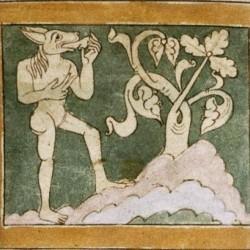 Кинопенны (кинокефалы). Рукопись Бодлеянской библиотеки (MS. Bodley 614, fol. 038v.)