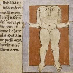 Блемии. Рукопись Бодлеянской библиотеки. (MS. Bodley 614, fol. 041r.)