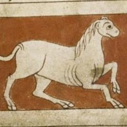 Камелеон. Рукопись Бодлеянской библиотеки (MS. Bodley 614, fol. 049r.)