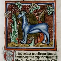 Единорог (monoceros). (Рукопись Бодлеянской библиотеки. MS. Bodley 764, fol. 022r)