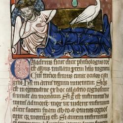 Харадр смотрит на больного. (Рукопись Бодлеянской библиотеки. MS. Bodley 764, fol. 063v)