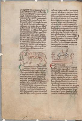 Крокодил поедает человека. Гиена на могиле. Рукопись библиотеки Паркера (CCC, Ms.22, fol.162v.)