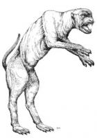 Гончая Гавриила (Canis mutabilis) из игрового мира Shadowrun