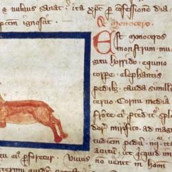 Единорог (monoceros). Рукопись Бодлеянской библиотеки (MS Douce 151, fol.017r.)