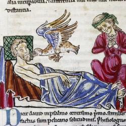 Харадр и больной. Рукопись Бодлеянской библиотеки (MS. Douce 167, fol.001v.)