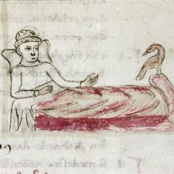 Харадр и больной. Рукопись Бодлеянской библиотеки (MS Douce 132, fol.065r.)