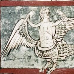 Сирена. Рукопись Бодлеянской библиотеки (MS Douce 88, fol.021v.)