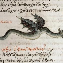 Дракон-амфиптер. Иллюстрация из средневекового манускрипта