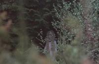 "Дсоноква. Кадр из фильма ""Тень ястреба"" (Shadow of the Hawk) 1976 года"