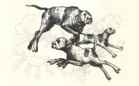 Гончие Гавриила. Иллюстрация Ивонн Гилберт