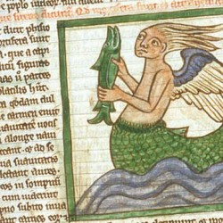 Сирена (Рукопись Британской библиотеки MS Harley 3244, fol. 55r)