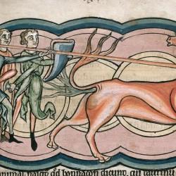 Бонакон (Рукопись Британской библиотеки MS Harley 4751, fol. 11r)